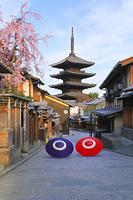京都府 しだれ桜咲く朝の八坂道と八坂の塔と和傘