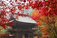 岐阜県 大矢田神社