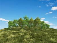 青空バックの草原の丘に樹木
