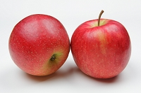 りんご ジョナゴールド