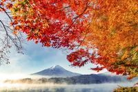 河口湖からの紅葉と朝靄