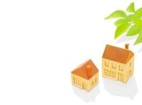 二棟の木の家とポトス