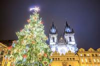 チェコ プラハ クリスマスツリーと教会