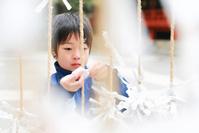 おみくじを結ぶ日本人の子供