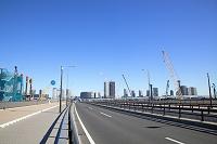 東京都 豊洲新市場建設地と道路