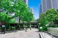 東京都 新緑の新宿 通勤風景