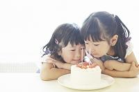 ショートケーキを見つめる日本人の女の子