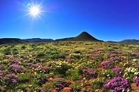 南アフリカ共和国 ナマクワランド