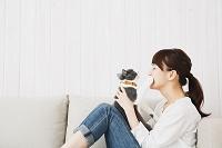 ソファで猫と遊ぶ日本人女性