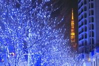 東京都 冬のイルミネーション