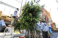 京都府 祇園祭 真木の立ち上げ直前の菊水鉾の榊