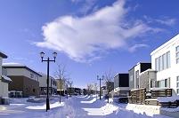 北海道 モダンな家並みと雪の道