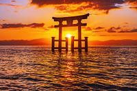滋賀県 高島市 白鬚神社の大鳥居と朝日