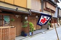 京都府 宮川町 花街の町並みとかき氷ののれん