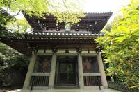 京都府 山崎聖天の仁王門