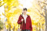 銀杏並木道を散歩する日本人女性