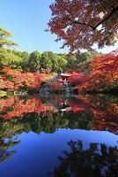 京都府 醍醐寺 弁天堂と紅葉の木々