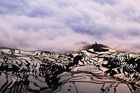 中国 雲南省 元陽 世界最大の棚田(ハニ族の棚田)