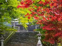岐阜県 長滝白山神社