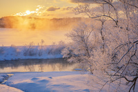 北海道 霧氷の阿寒川と朝日