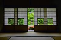 京都府 雲龍院
