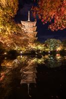 京都市 東寺 五重塔