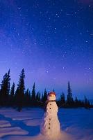 アラスカ 雪だるまと夜空