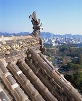 姫路城天守閣の鯱
