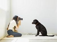 犬の写真を撮る日本人女性