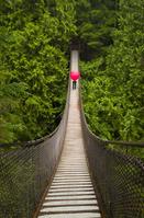 つり橋を渡る女性