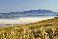 阿蘇の雲海とススキの草原