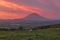北海道 町営牧場
