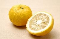 1個の柚子と柚子の断面