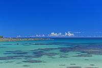 鹿児島県 夏の土盛海岸と積乱雲