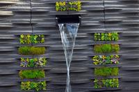 水のある壁面緑化