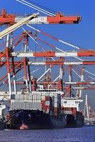 神奈川県 横浜港 本牧埠頭のコンテナ専用船