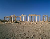 シリア パルミラ 列柱