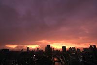 大阪府 雨雲と夕焼け