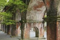 京都府 南禅寺水路閣と楓の若葉