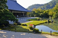 天龍寺 庭園