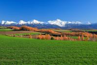 北海道 晩秋の丘と山並み