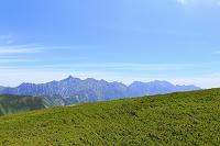岐阜県 北アルプス双六岳付近から見た槍ヶ岳と西鎌尾根とハイマ...