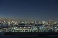 東京都 豊洲市場と晴海方面のビル群 夜景