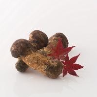 松茸と紅葉