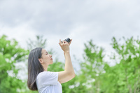 新緑と写真を撮る日本人女性