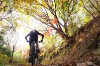 紅葉とマウンテンバイク
