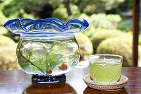 冷茶と金魚鉢