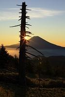 静岡県 山伏岳 夜明けの富士山と朝日