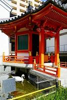 京都府 聖徳太子沐浴の池跡と太子堂