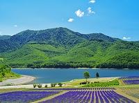 北海道 かなやま湖の園